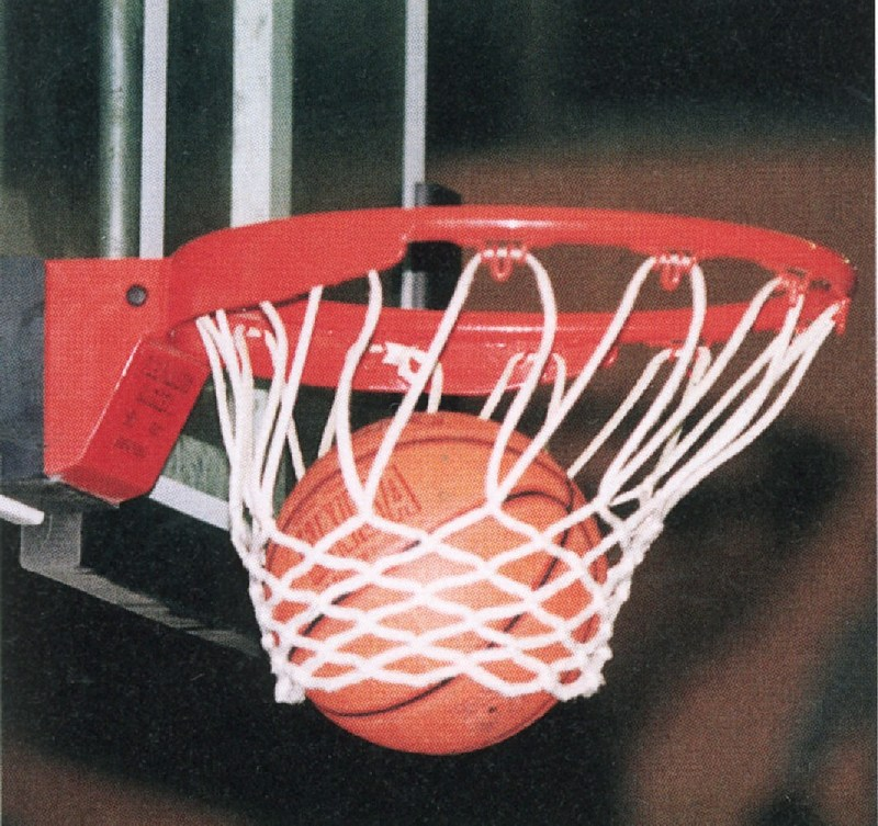 Basketballnetz_01_800x800_200KB